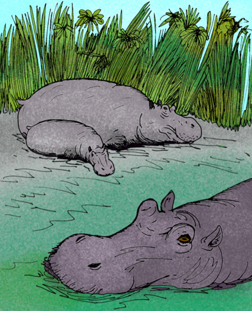 A depiction of Hippopotamus gorgops, a close relative of the African hippo.