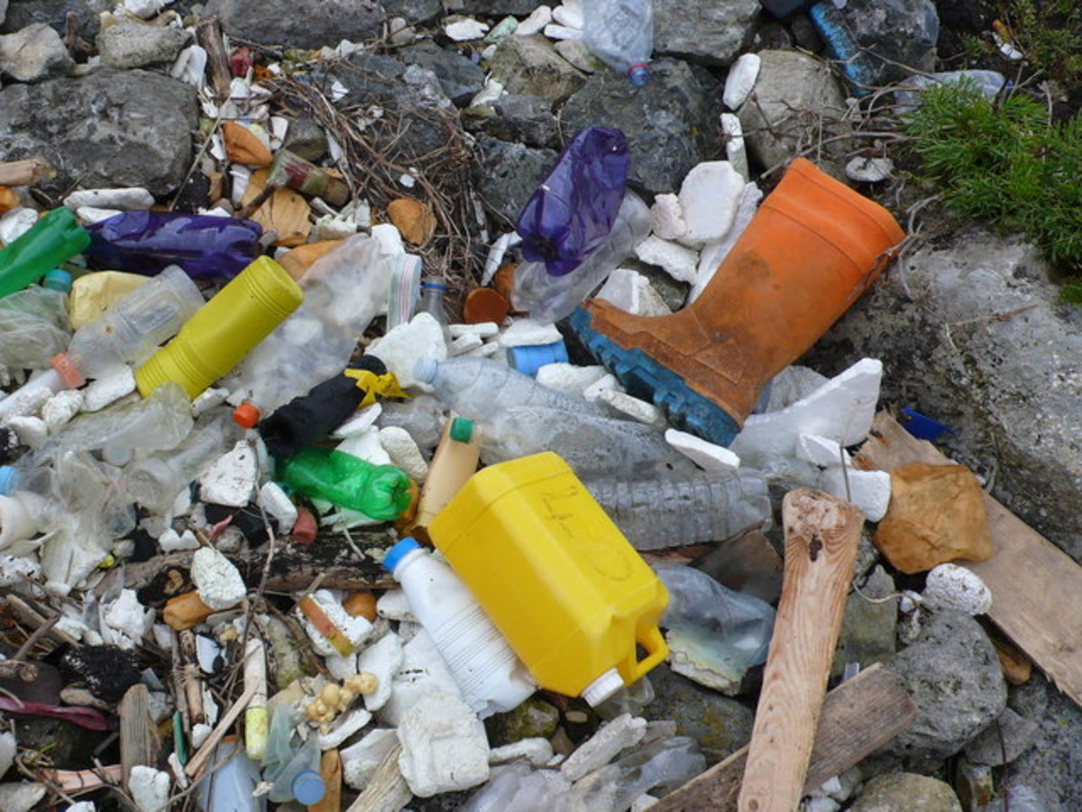 Plastic litters our beaches and oceans.