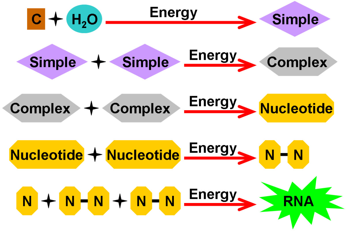 A diagram showing a more elaborate example of Abiogenesis, where compounds can bind together in the presence of energy, forming increasingly complex molecules, leading to the formation of nucleotides and eventually simple forms of life, like RNA.