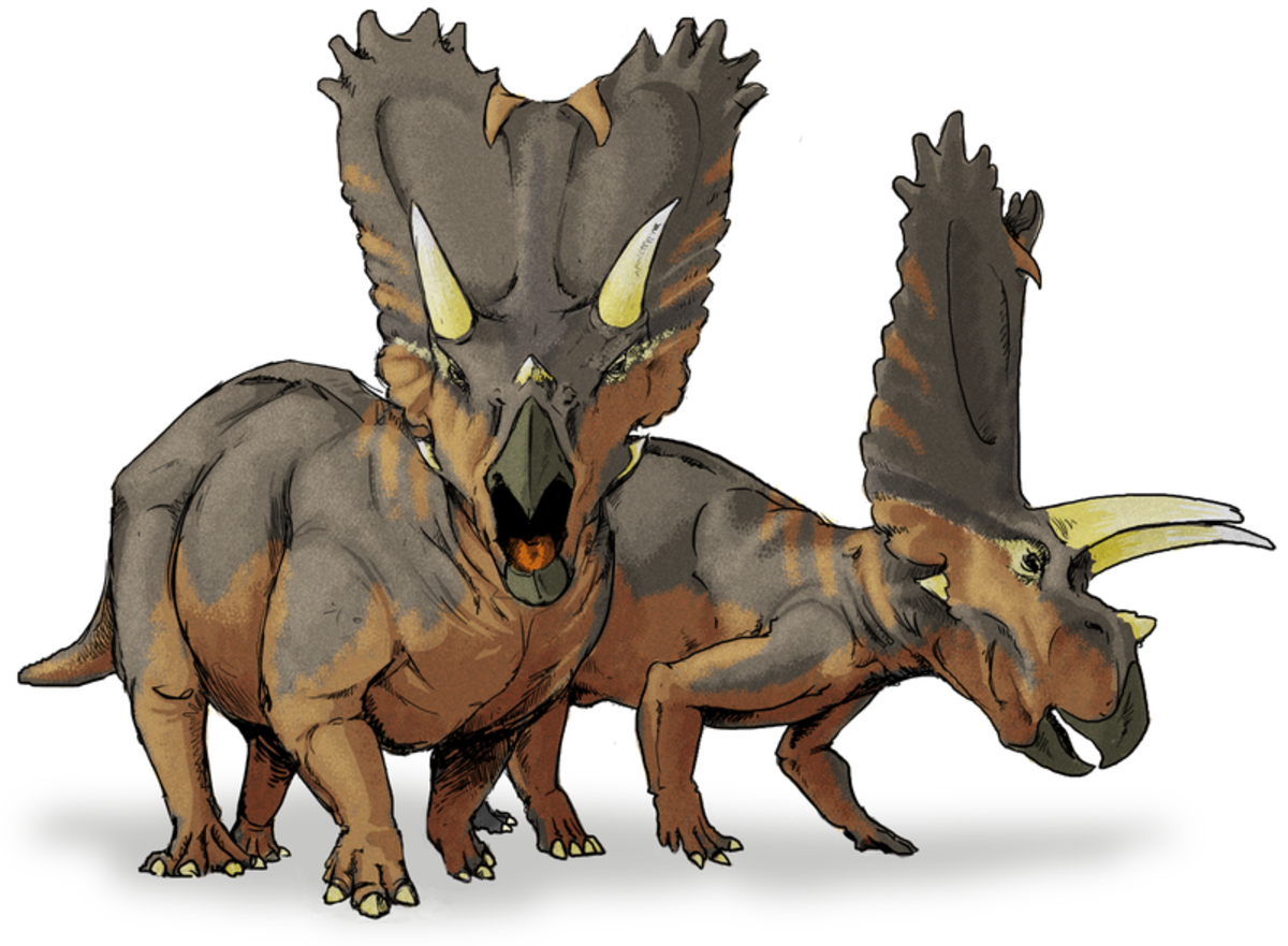Interesting Information and Facts about Ceratopians (Ceratopsians)