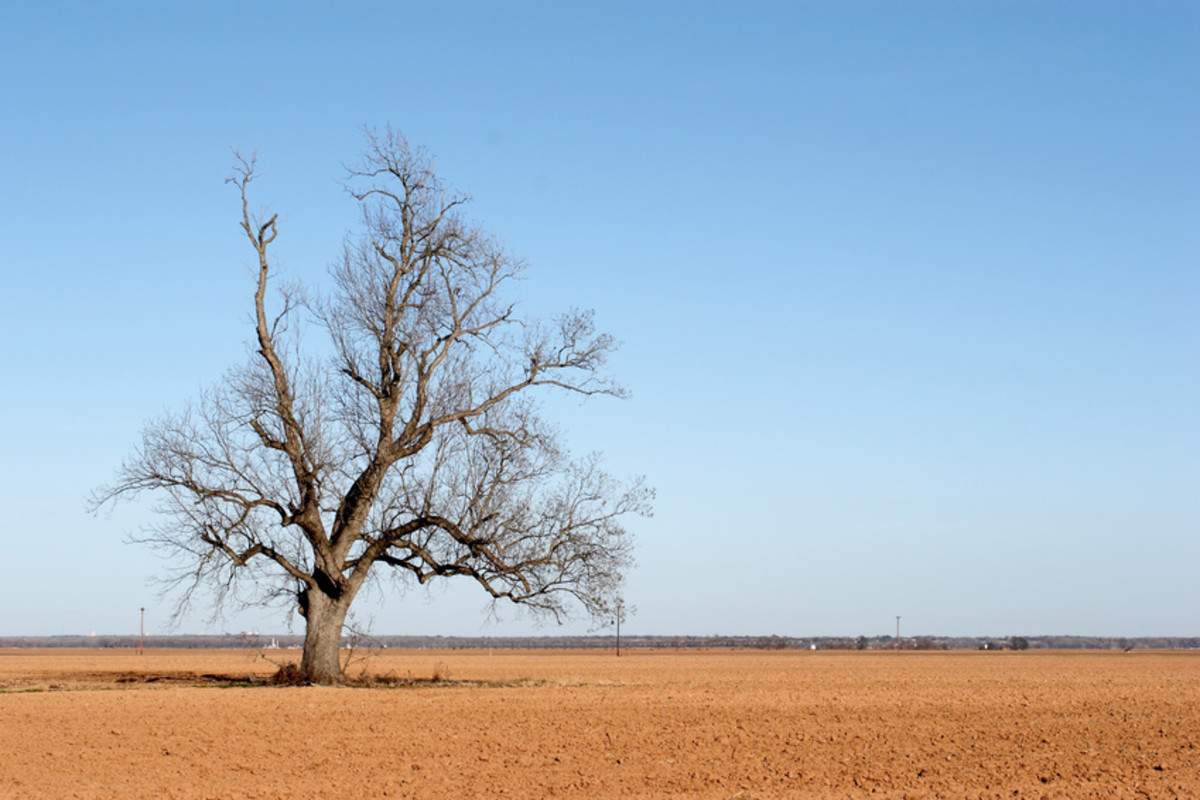 Dry and barren.
