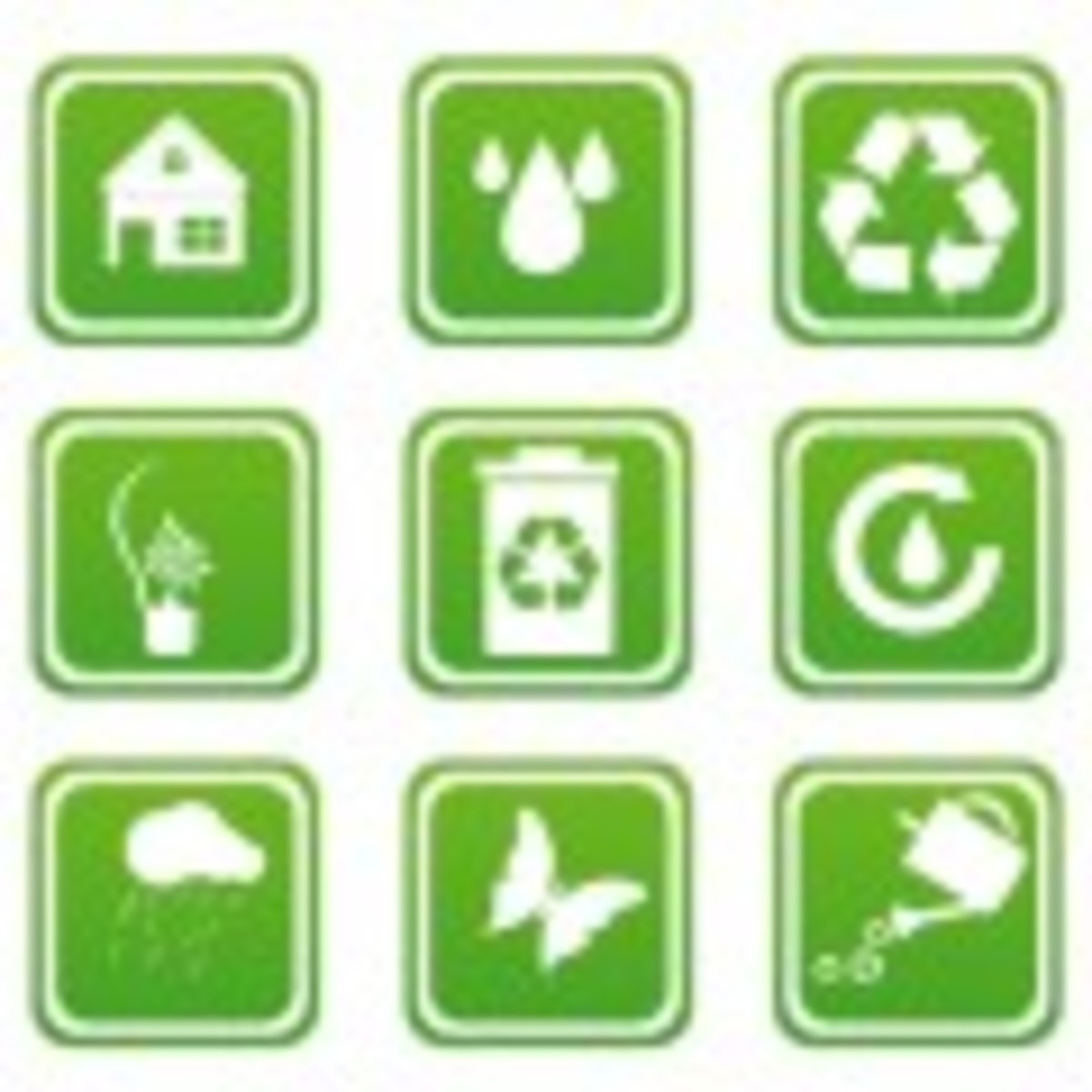 Top Environmentally Friendly Companies