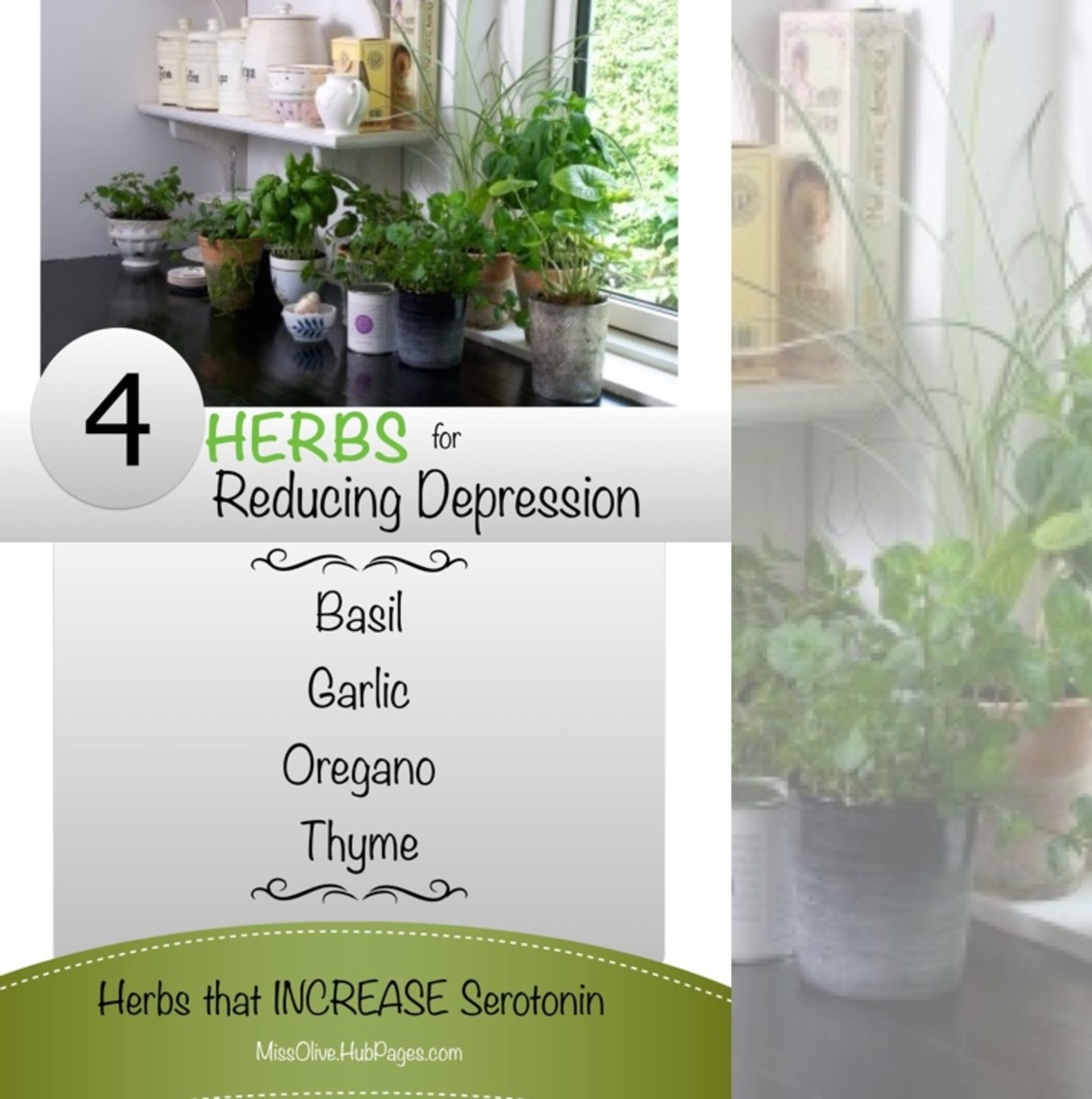 Keep these four herbs in the kitchen and use them in your recipes to help reduce depression: Basil, Garlic, Oregano and Thyme.