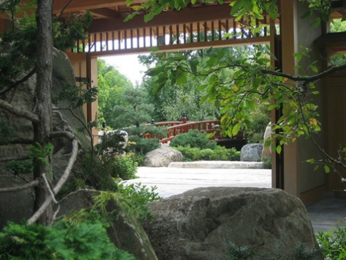Anderson Japanese Garden in Rockford.