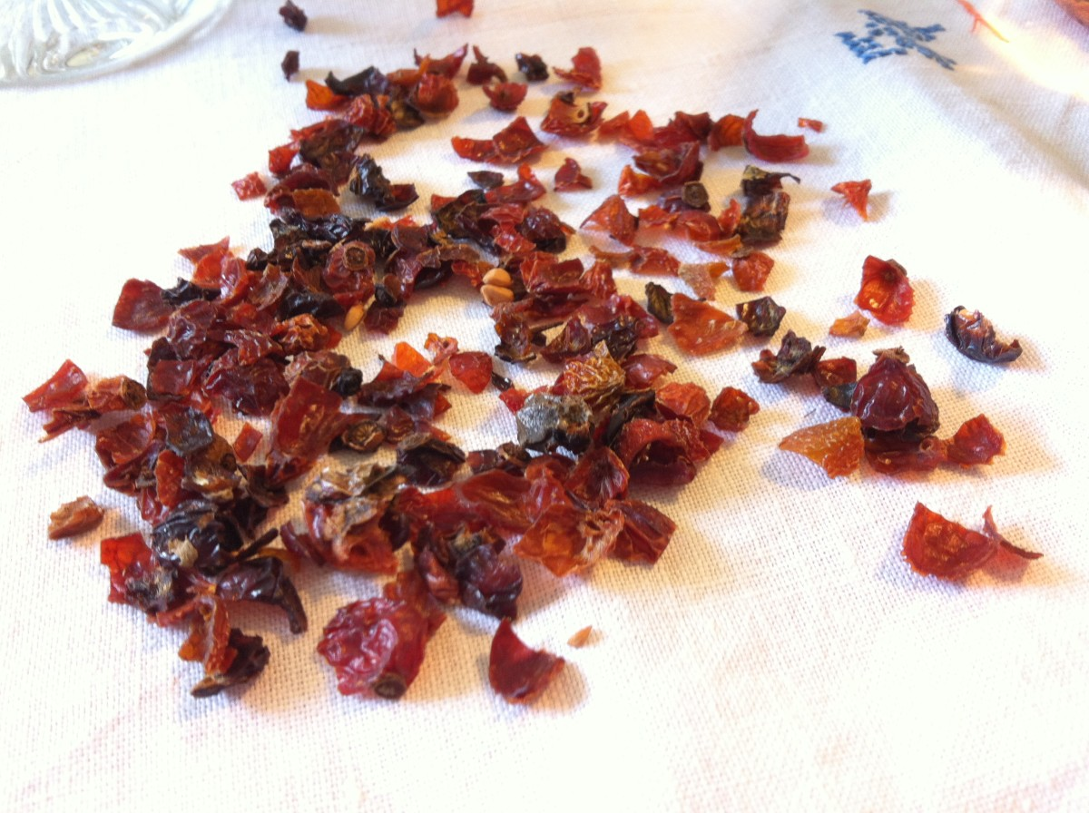 Dried wild rose hips