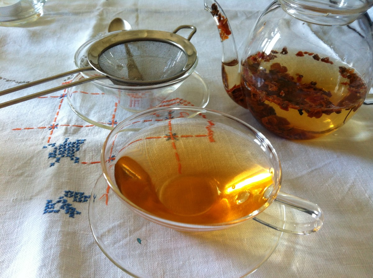 How to Make Wild Rose Hips Tea From Your Own Dog Rose Bush