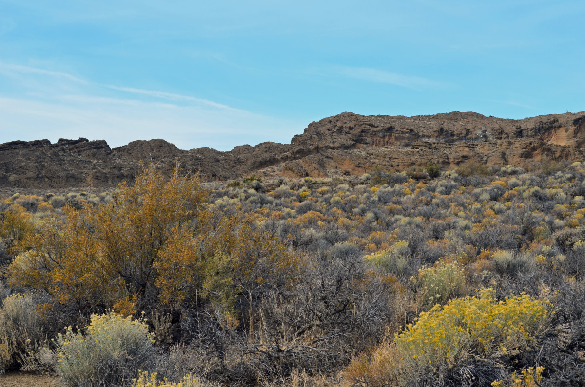 Looking up towards the top of the volcanic rock formations from the trails.