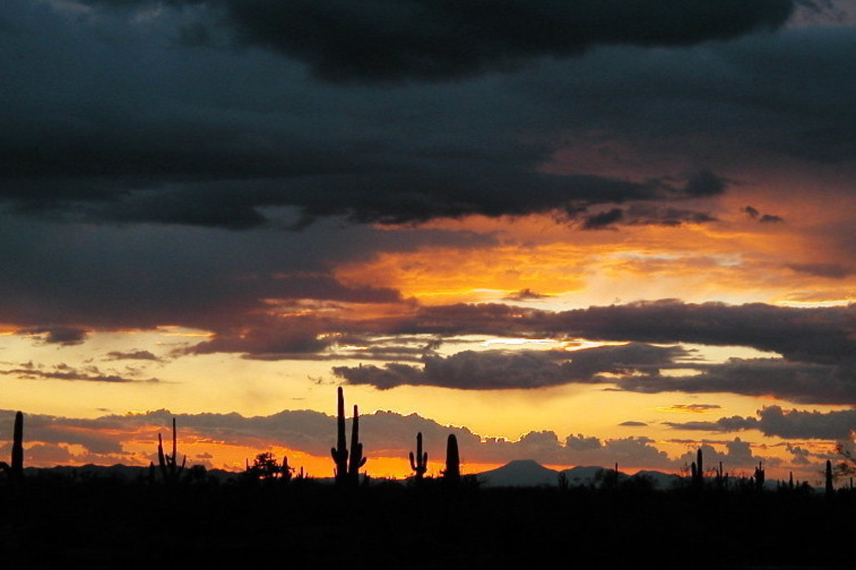 This photo of a sunset in the Sonora Desert in Arizona was the inspiration for a desert sunset watercolor painting.