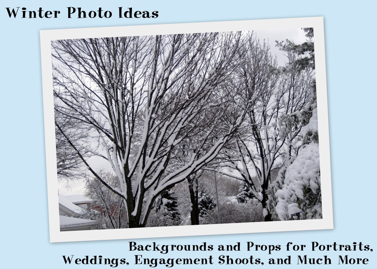 Winter Photo Ideas