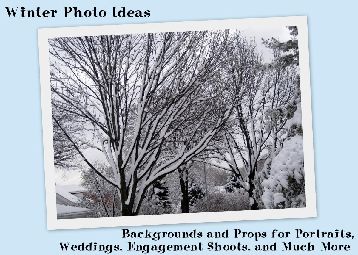 winter-photo-picture-ideas