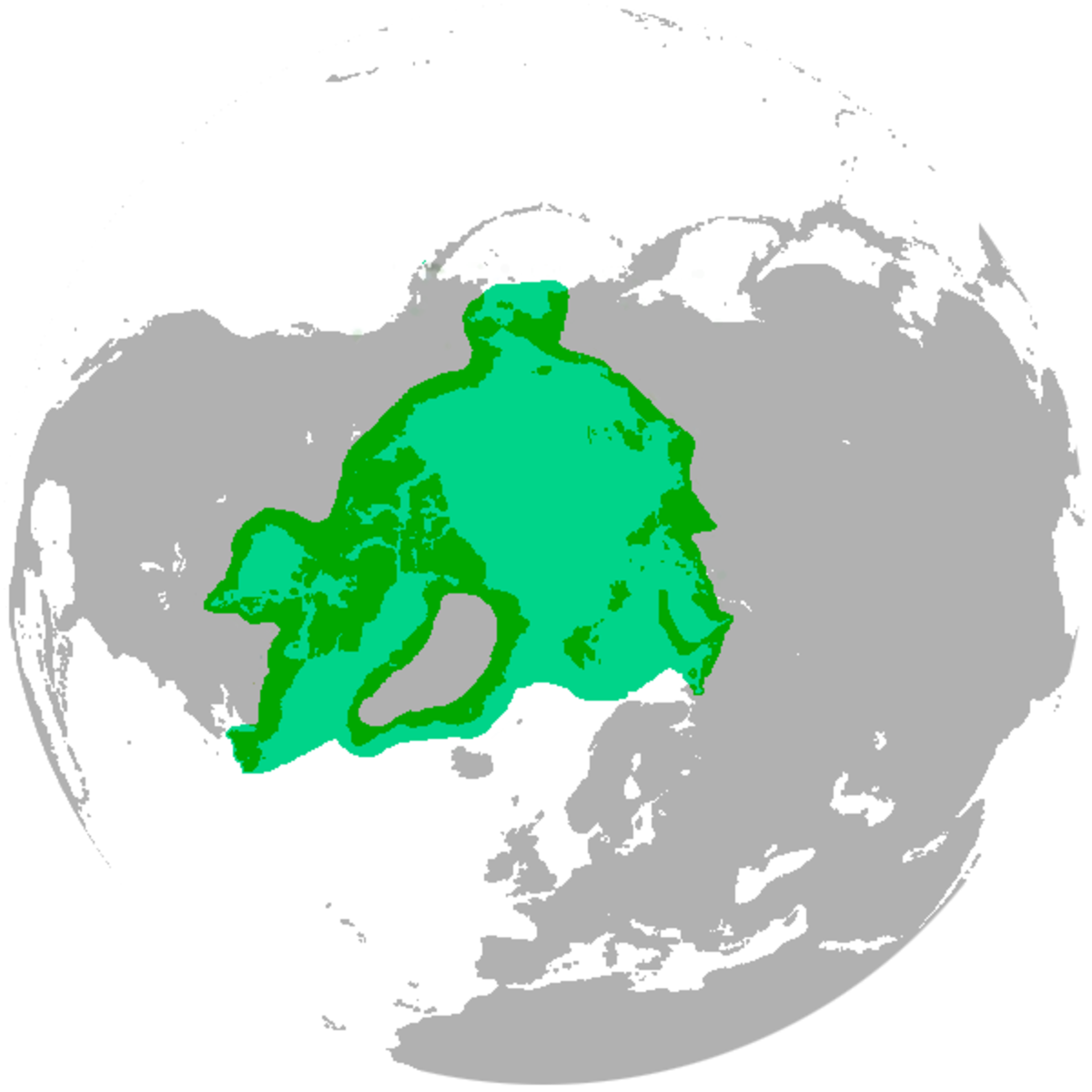 Polar bears live in the Arctic Circle - Canada, Russia, Alaska, Greenland, and Norway.