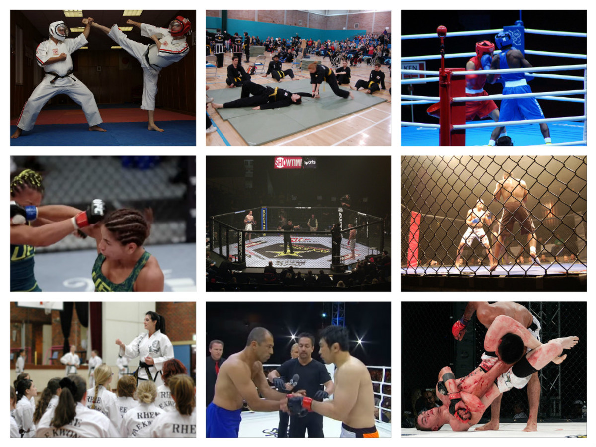 Traditional Martial Arts Versus Mixed Martial Arts