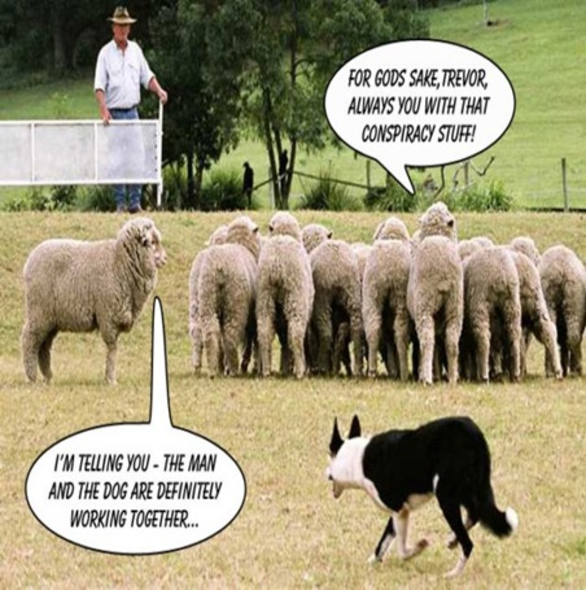 Why Conspiracy theorists and Priests call people sheep