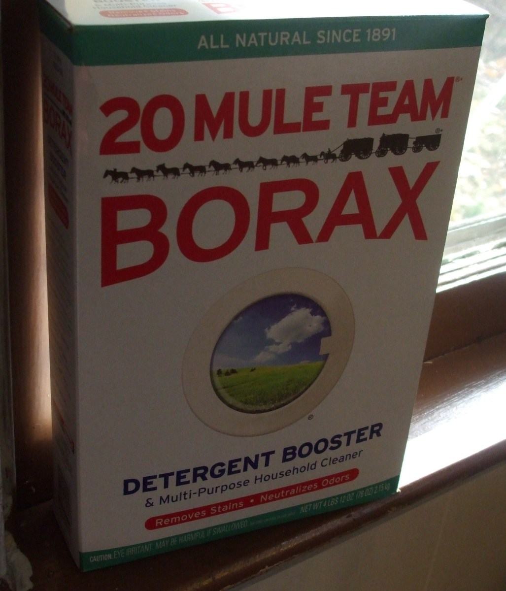 Good 'ole 20 Mule Team Borax is full of mold-killing lime borate good stuff!