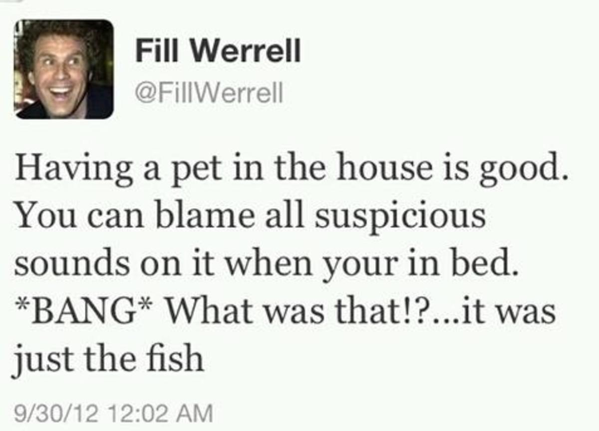 Will Ferrell Funniest tweet