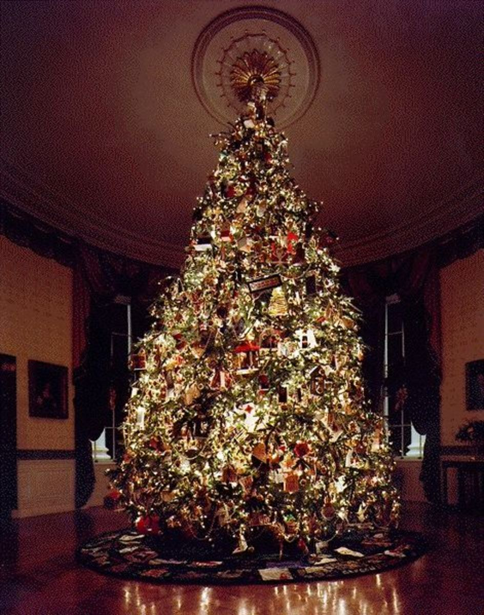 Fraser Fir Tree in White House