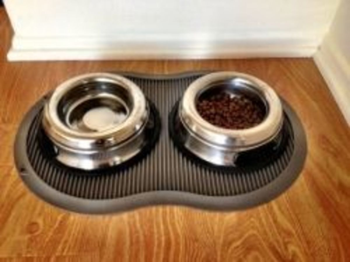 Dog Bowls That Won't Tip Over And Spill