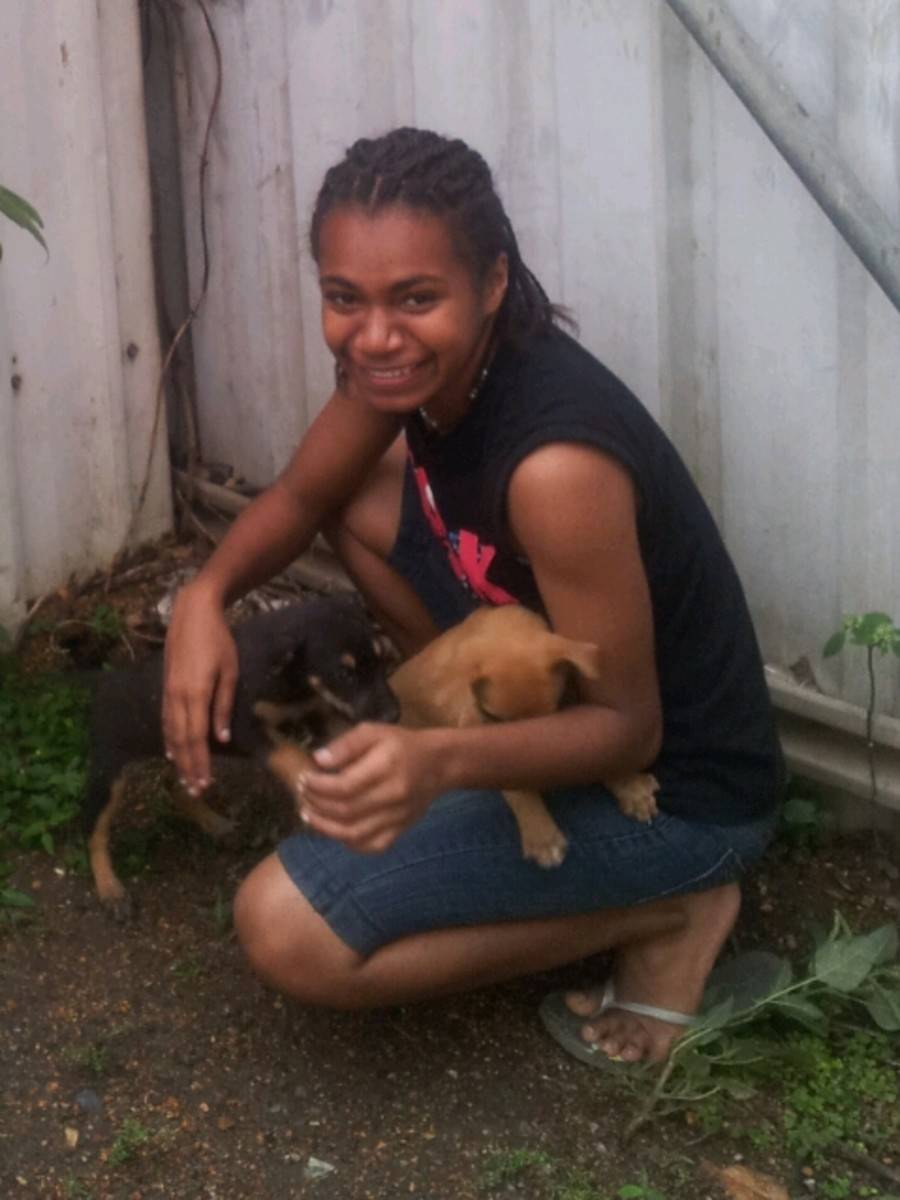 Lydia with stray puppies October 2012