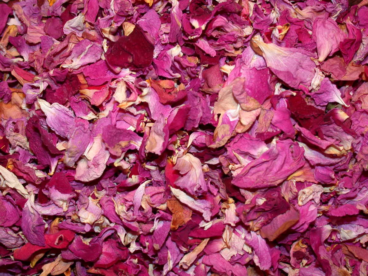 Rose petals or other flower petals can be used as another method of scenting your oils before soap making.