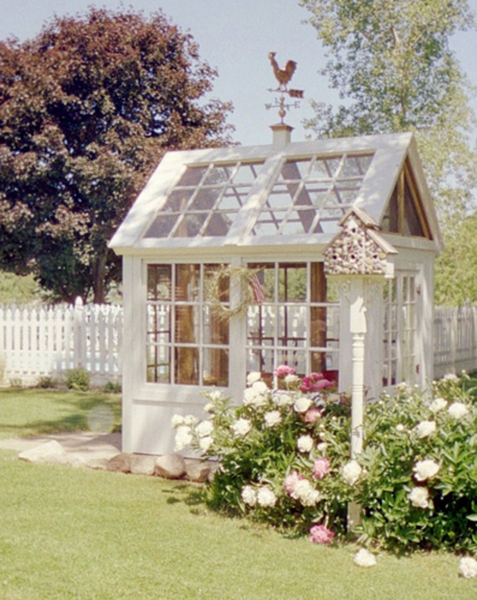 Beautiful Garden Shed with glass windows doors and cupola