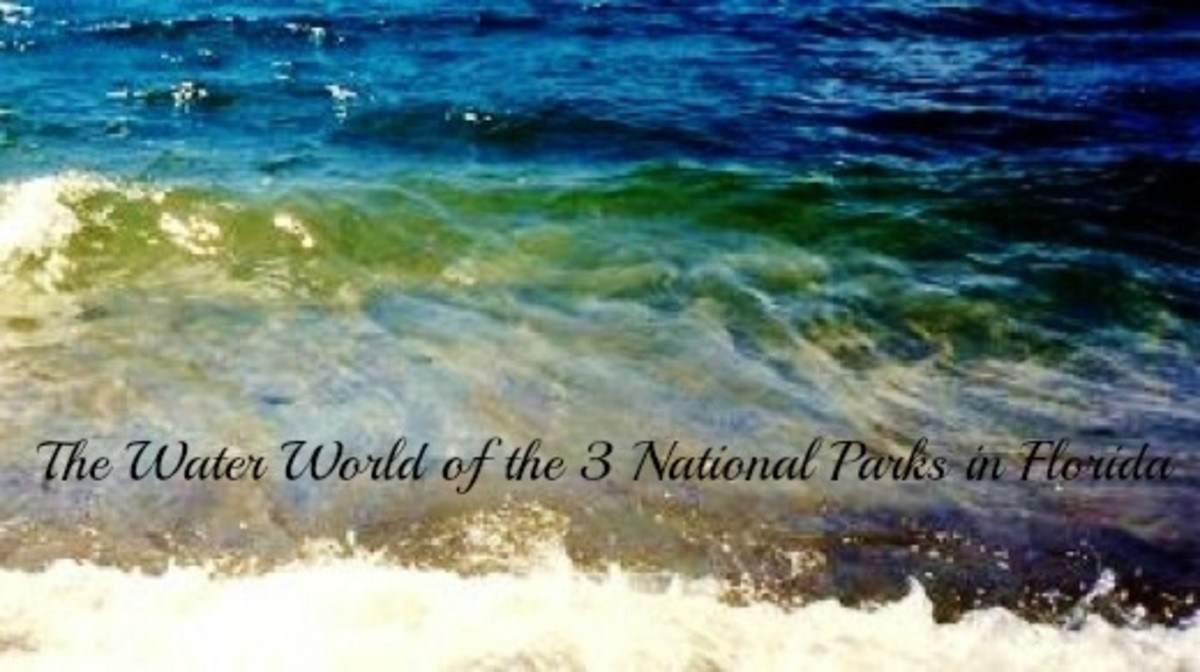 The Water World of the 3 National Parks in Florida