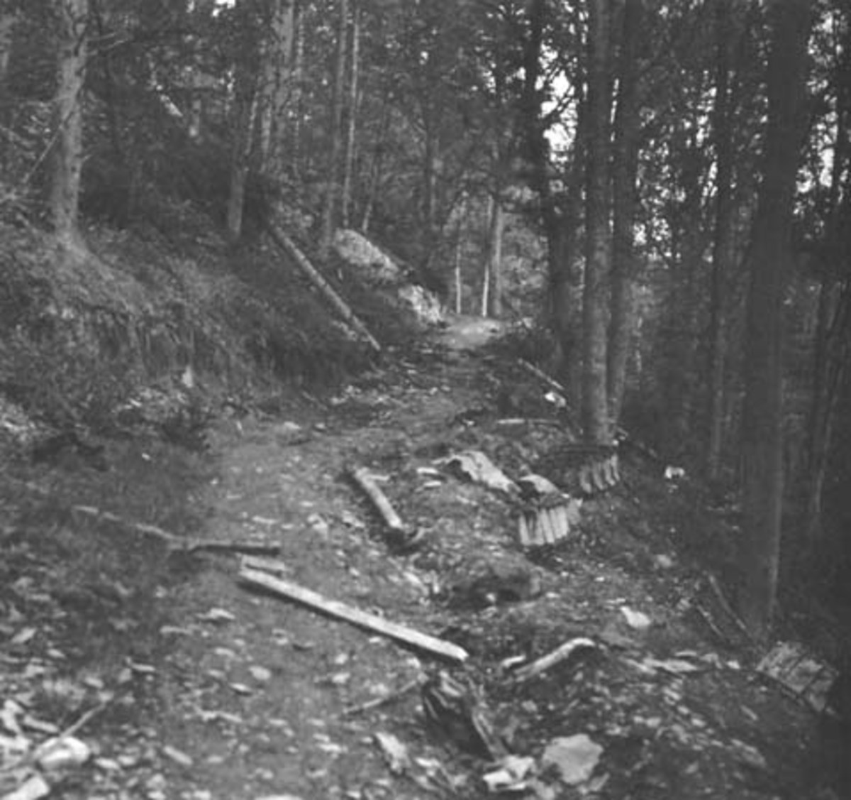 The infamous Kall Trail. American troops battled over this trail for months, even trying to get tanks and tank destroyers through. Note the thrown tracks to the right.