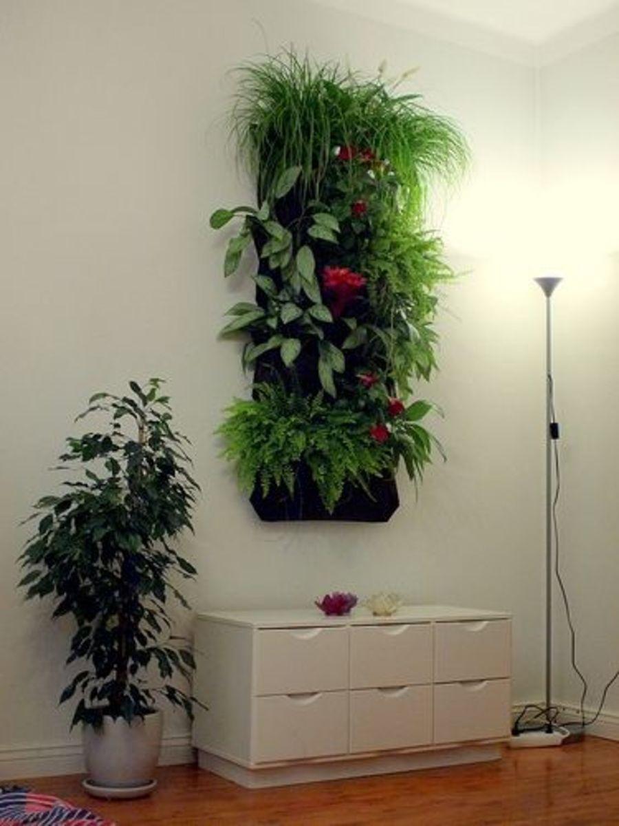 Living Wall Indoor Vertical Garden