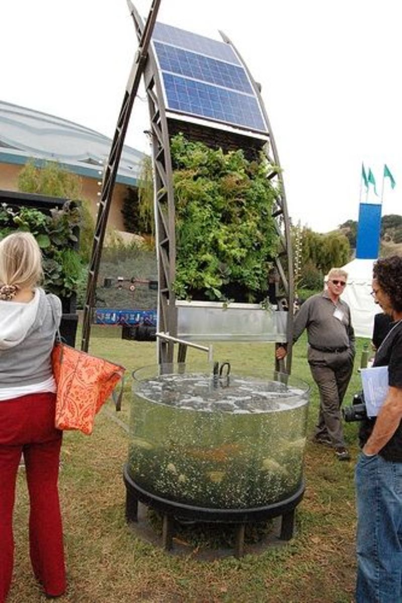 Ultra Modern Vertical Garden
