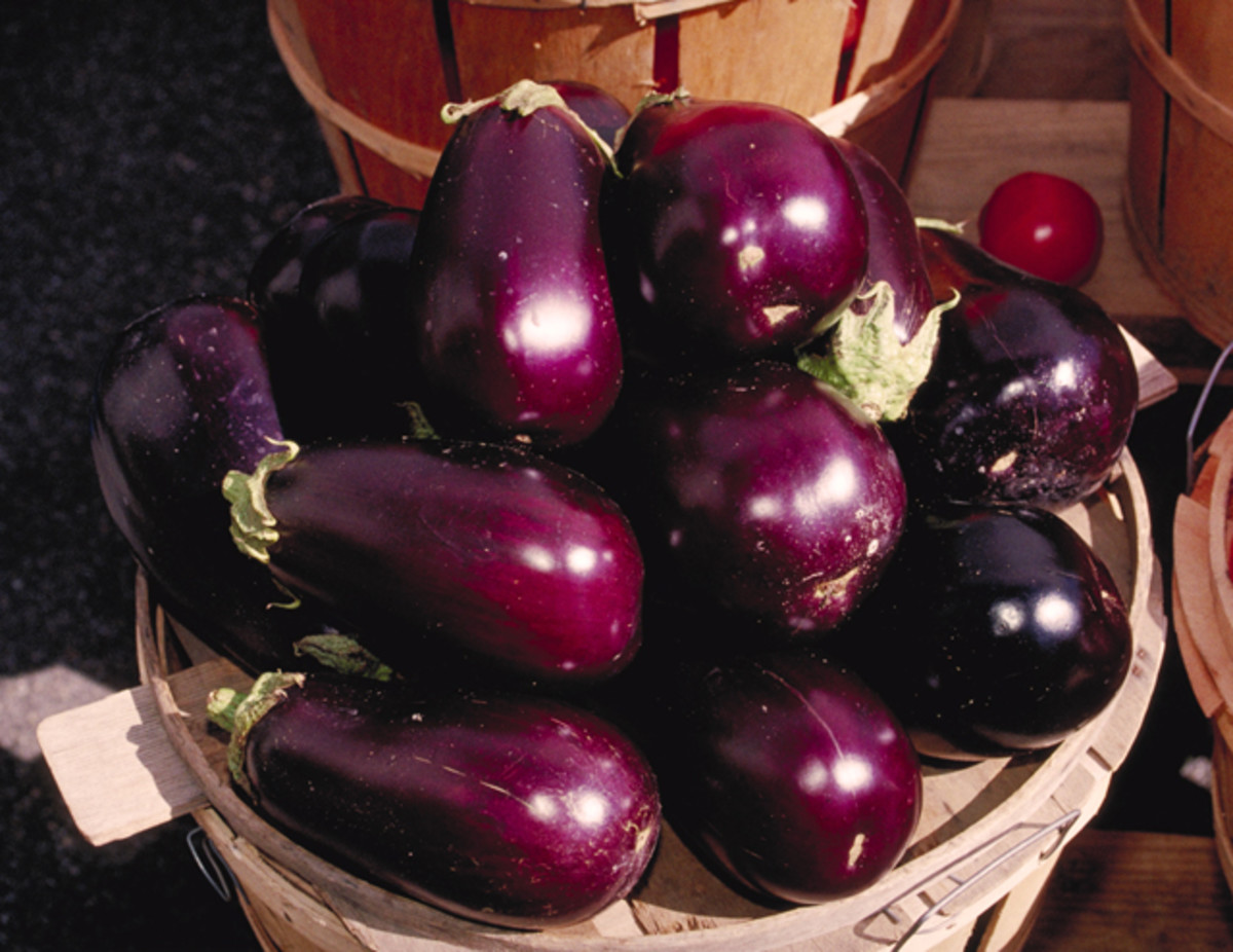 Health Benefits Of EggPlant - Brinjal - Baingan - Aubergine