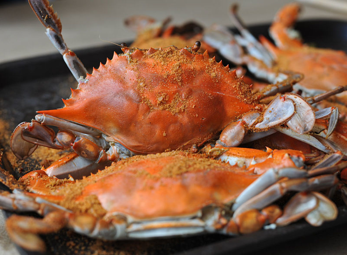 Maryland is most well known for its delicious blue crabs right from the Chesapeake Bay (among other food)