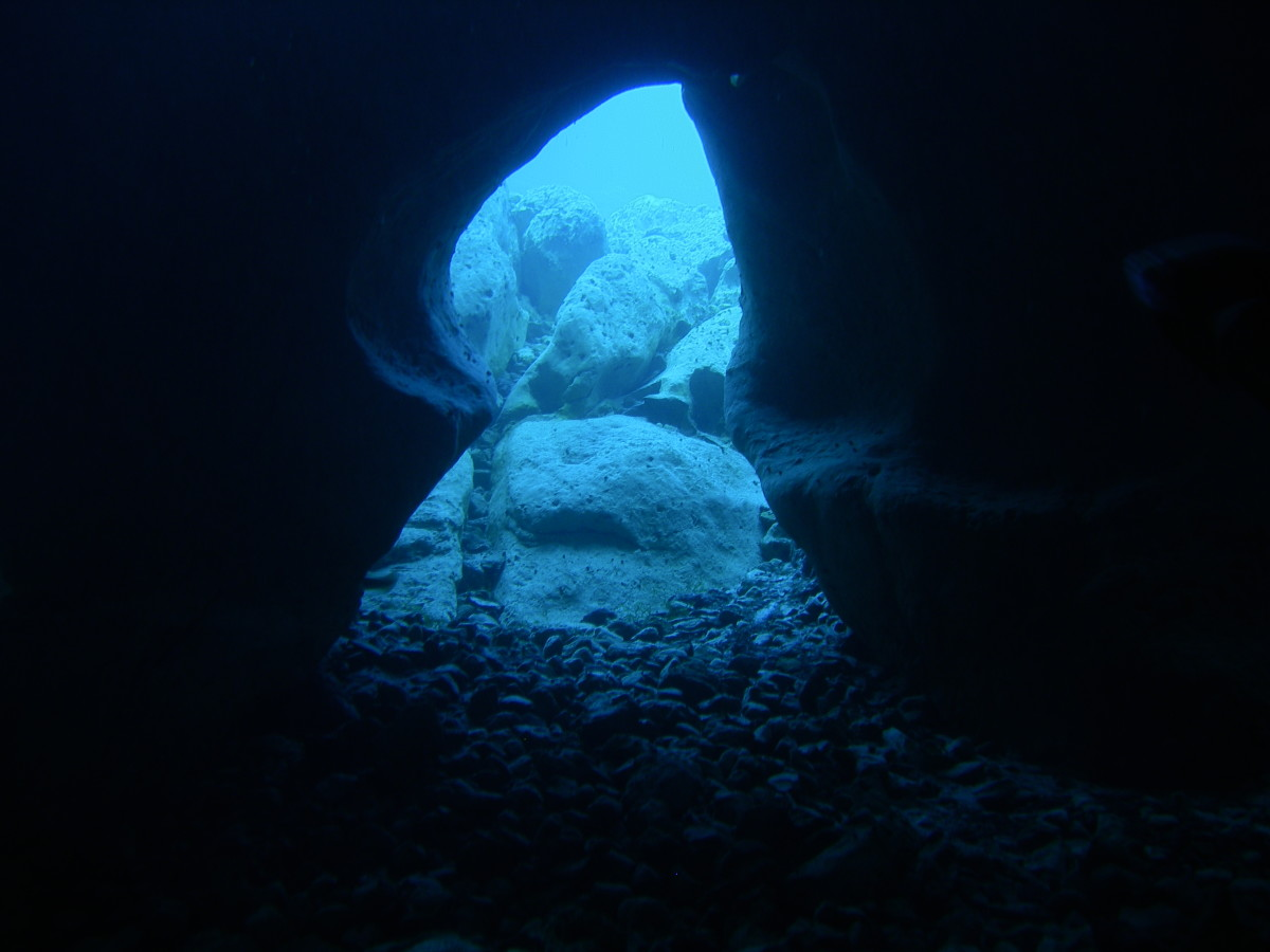 Since sinkholes create space beneath the Earth's surface, they can form caverns and caves, and can fill with water.