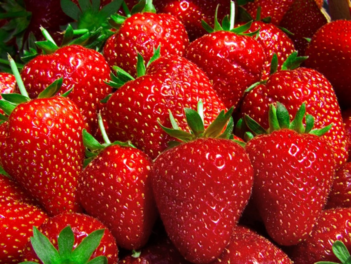 How to Remove Kidney Stones by Strawberry