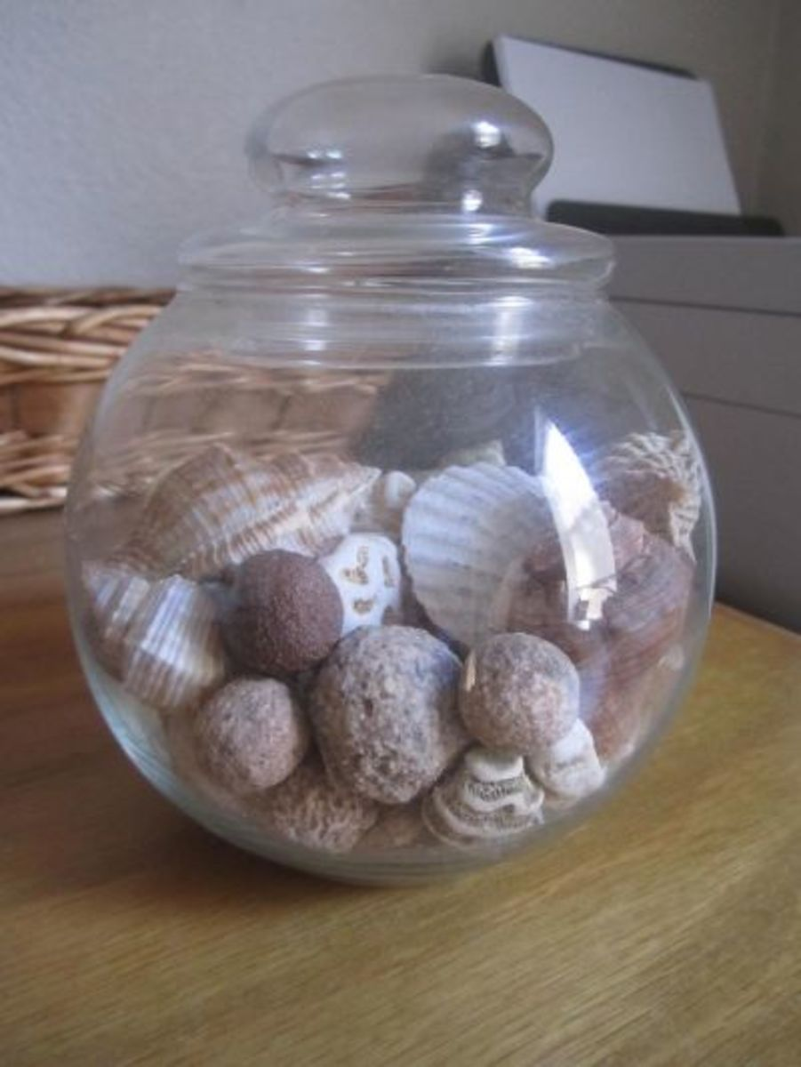 The beachcombing collection on my desk