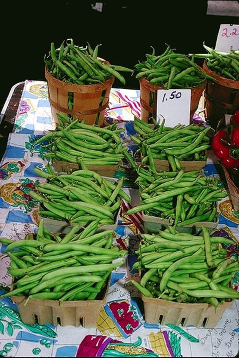 green beans, which are in fact the immature or raw pods