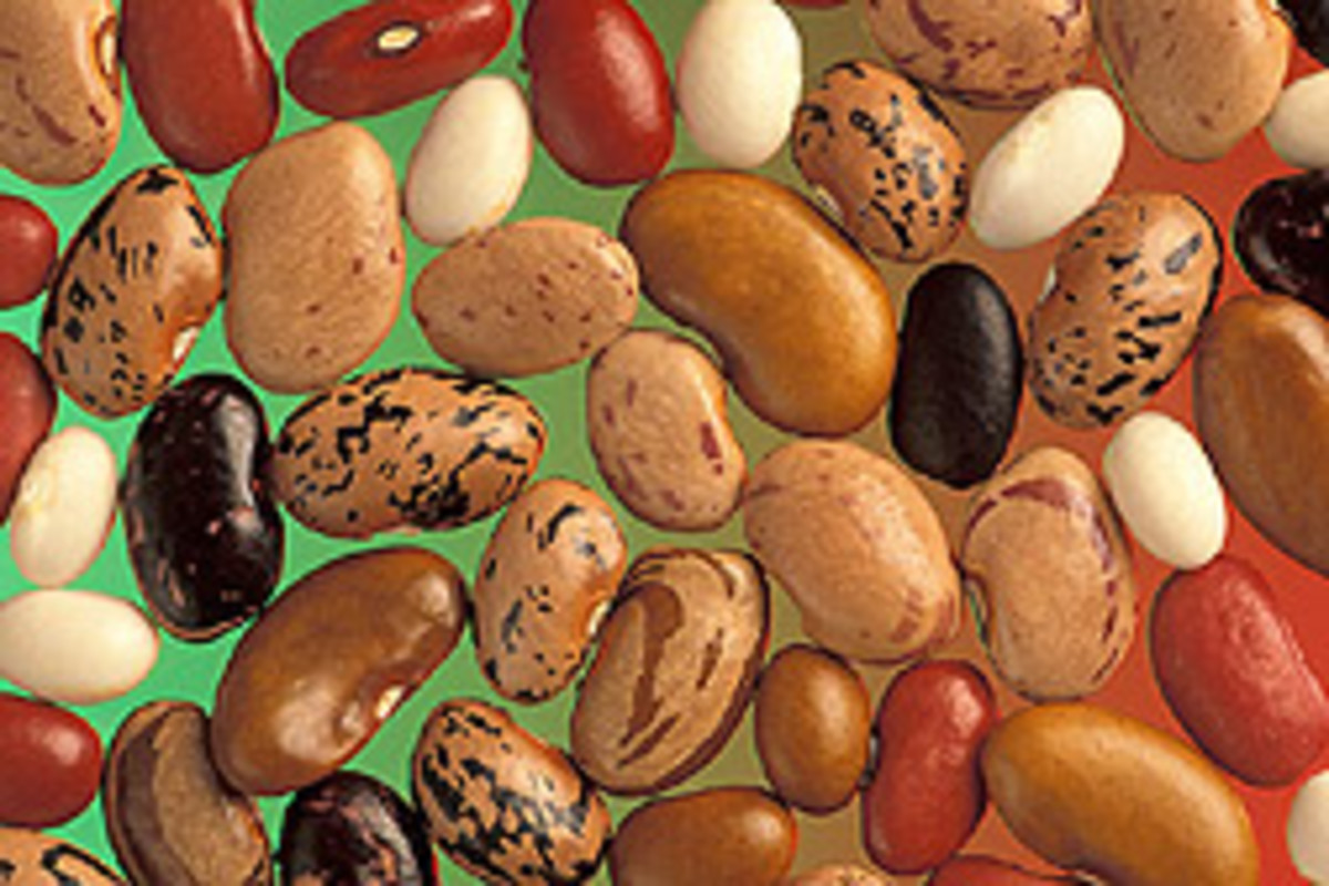 the-nutritional-and-health-benefits-of-kidney-beans