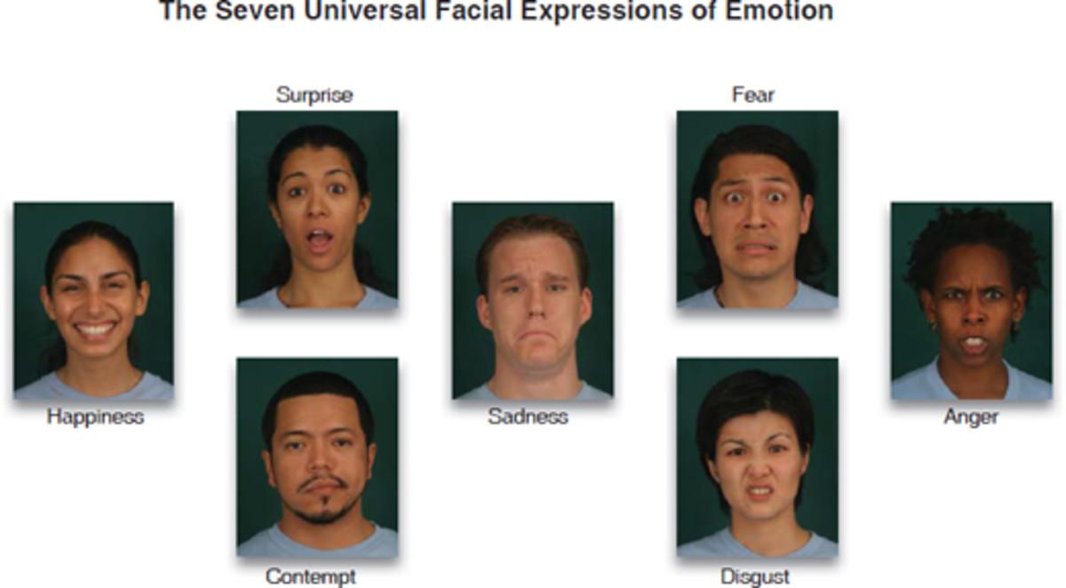 Seven universal facial expressions