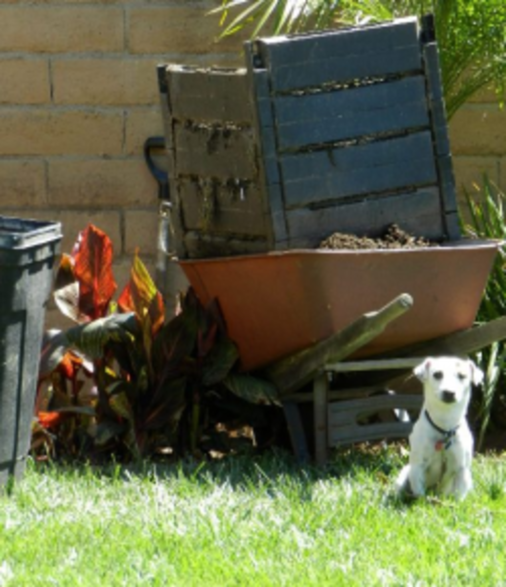 Compost bin and Hank