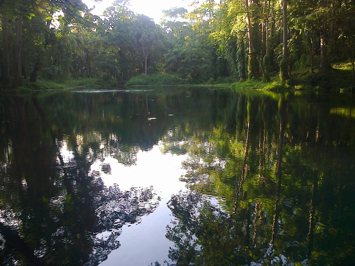 The serene and calm water of Nasuli spring lagoon.