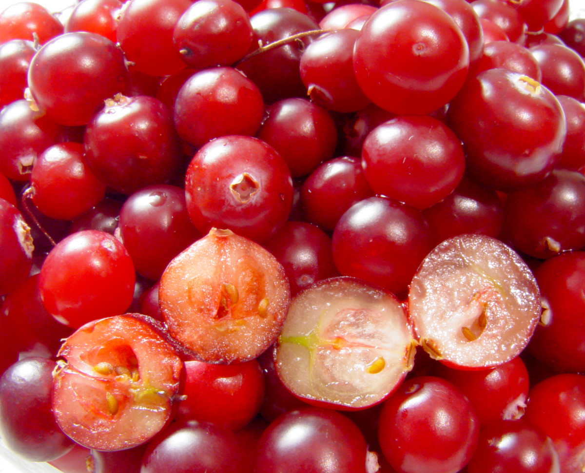 the-health-benefits-of-cranberries-and-cranberry-juice