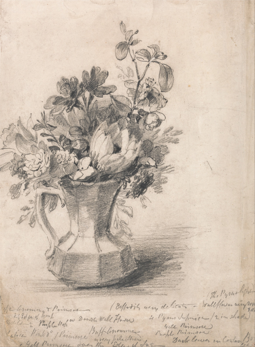 How To Draw A Flower Vase Still Life Hubpages