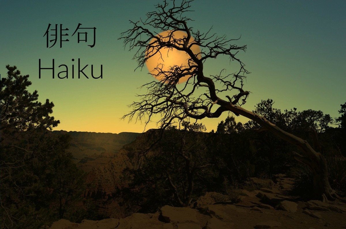 Defining and Writing Haiku - Try It Now!