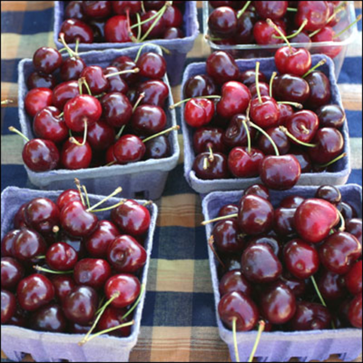 food markets are the best place to pick up fresh organic cherries whenever possible.