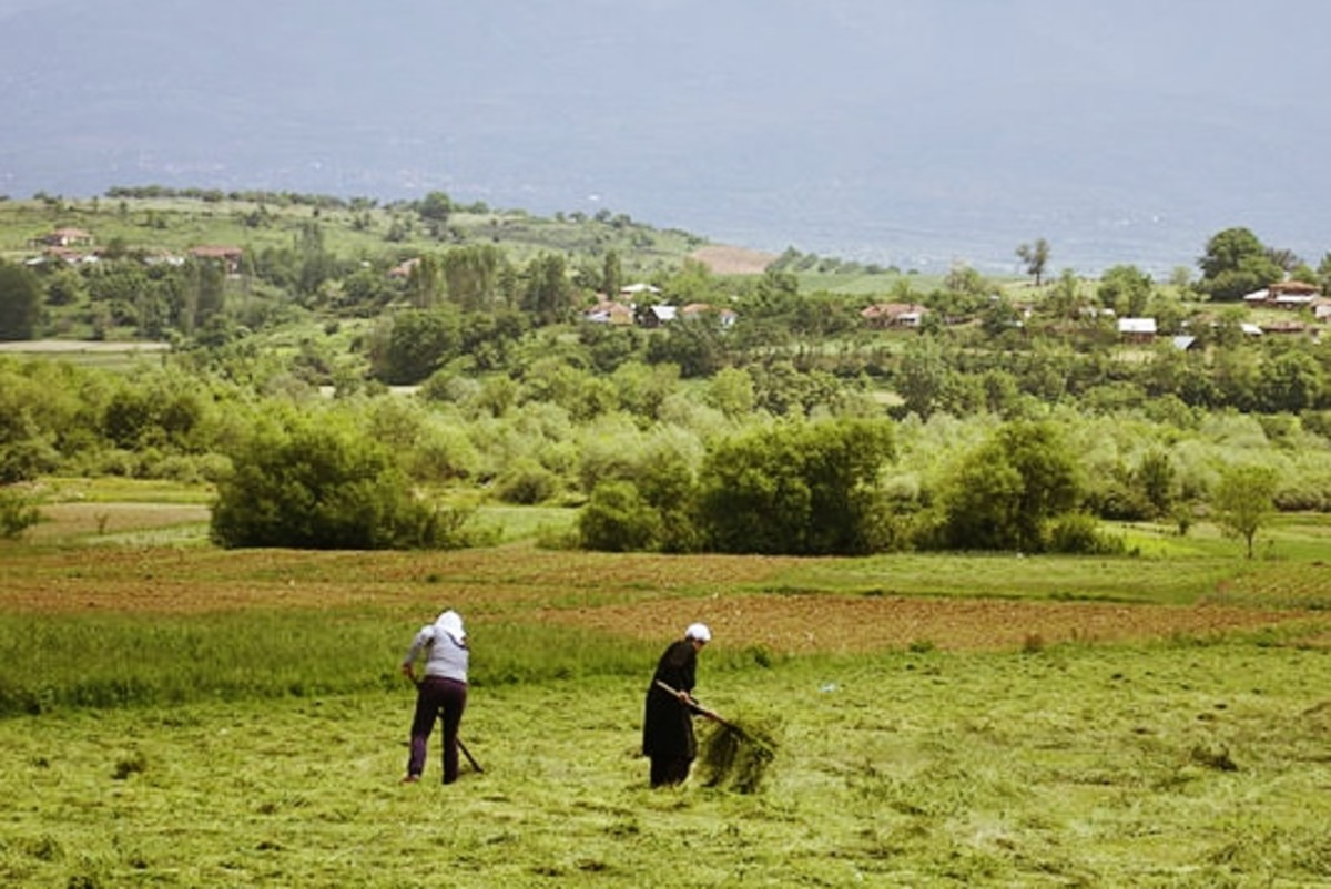 Rural Albanian farm workers.  Photo by Hannah Mishin, 2011
