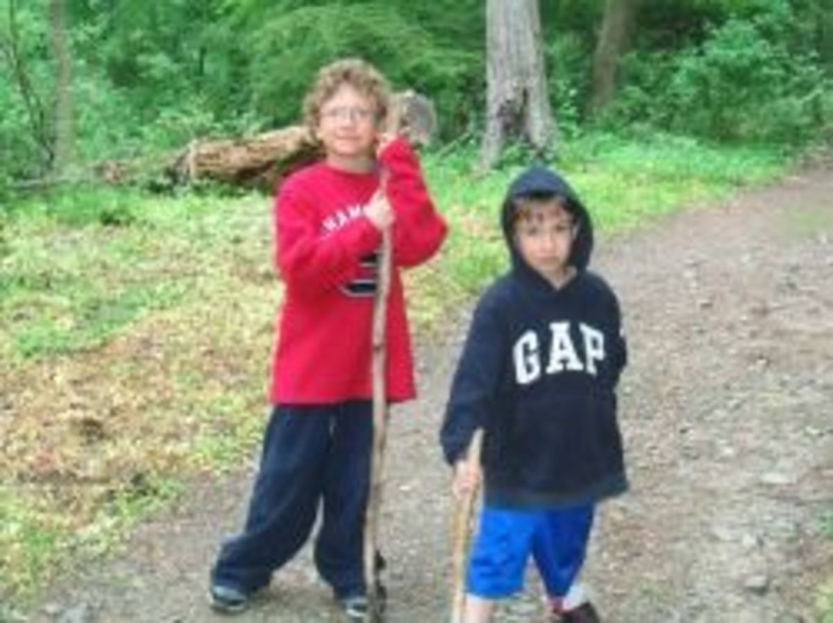Enjoying a hike on a groomed trail close to home. Here my sons are 9 and 6 years old.