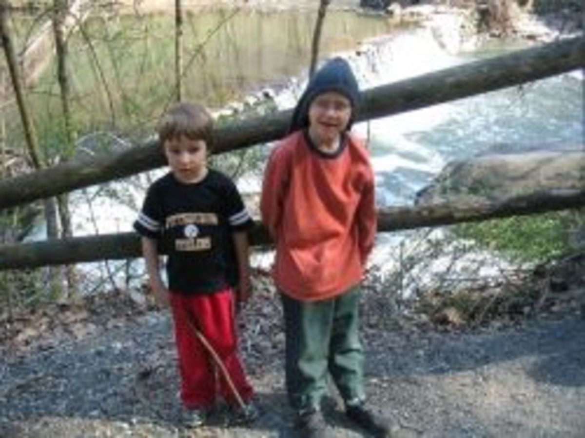 My boys were 7 and 4 when we went on this day hike.
