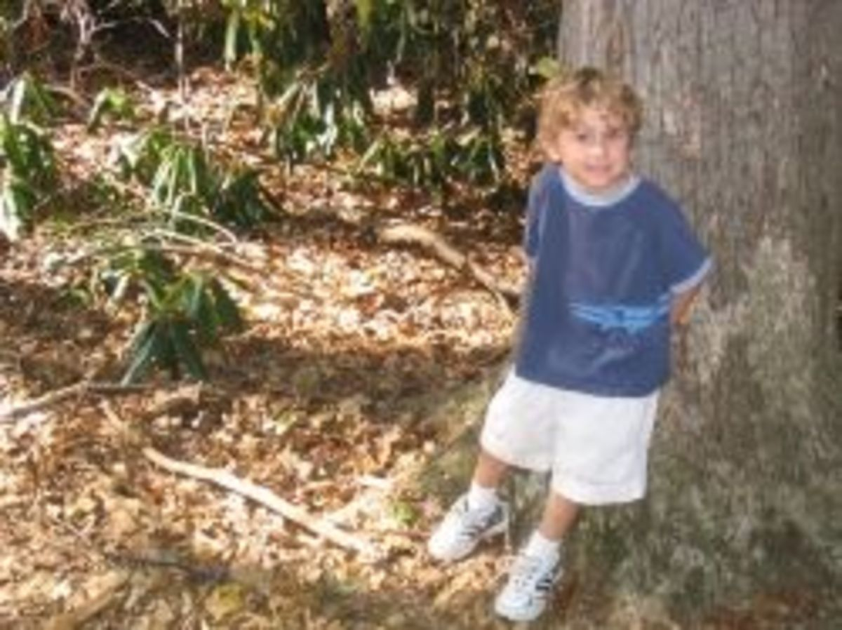 Here is my older son, then 4 years old, on a hike at a nearby nature center.