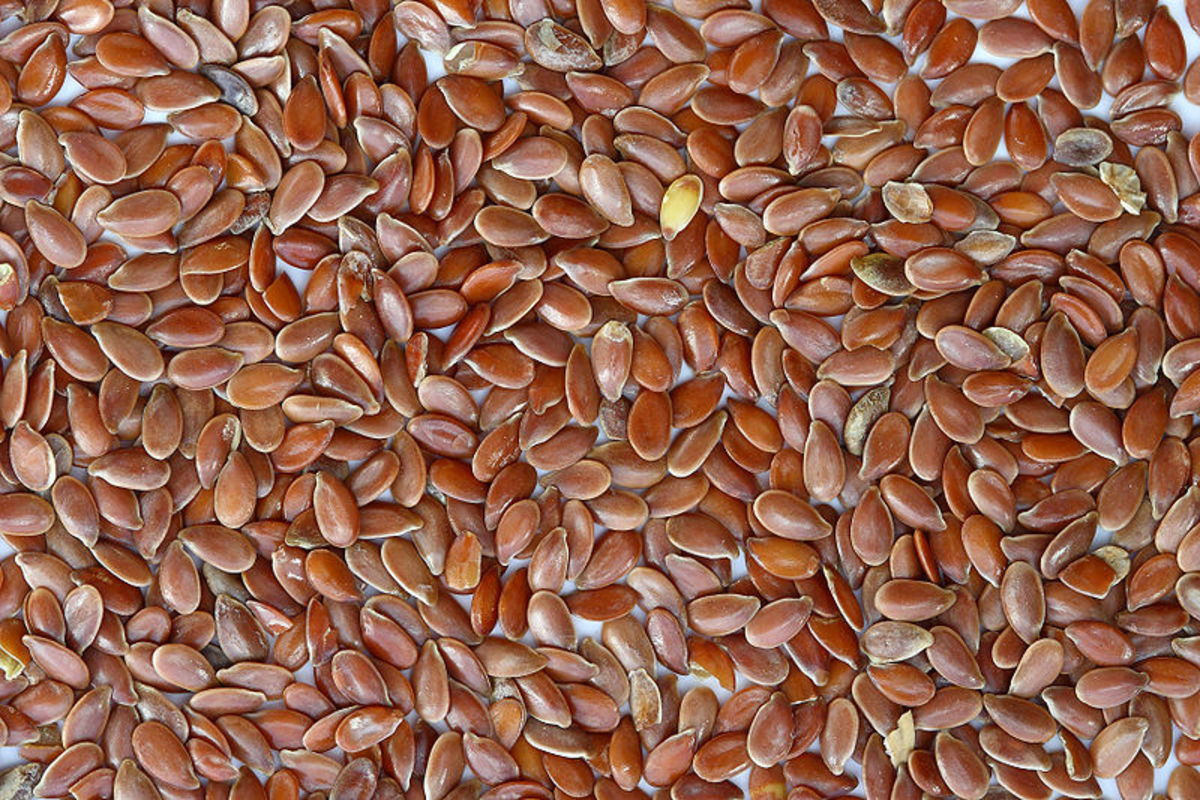 Flax seeds-the fish substitute