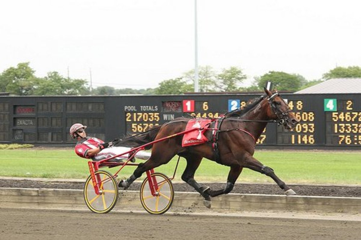 Broad Bahn, winner of the 2011 Hambletonian for 3-year old trotters.  He was driven to victory by George Brennan, the kingpin of Yonkers Raceway.