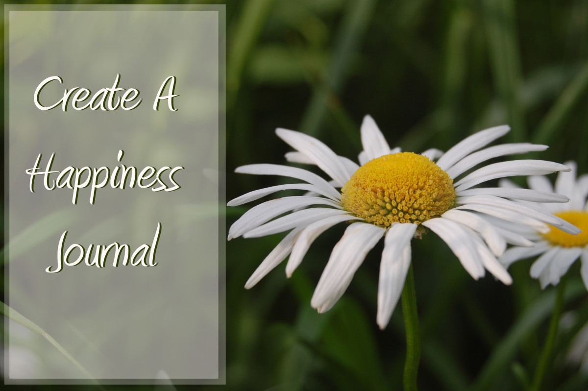 Create A Happiness Journal-daisy