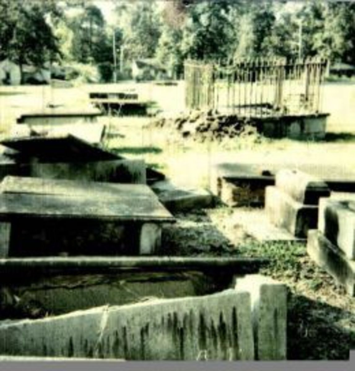 This is a photo from the old cemetery on Boundary Street In Newberry South Carolina
